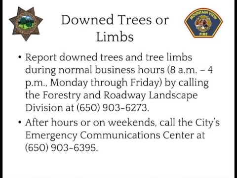 Mountain View Police and Fire Storm Information - Downed Trees or Limbs