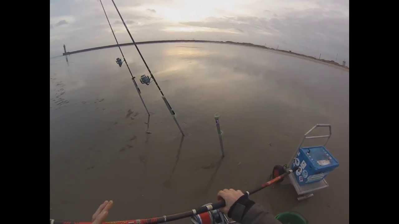 Sur la pêche dhiver sur la carpe