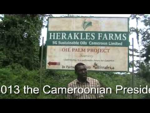 Cameroonian Activist Vs Wall Street  Giant Herakles Farms