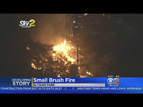 Firefighters Keep Elysian Park Brush To Less Than An Acre