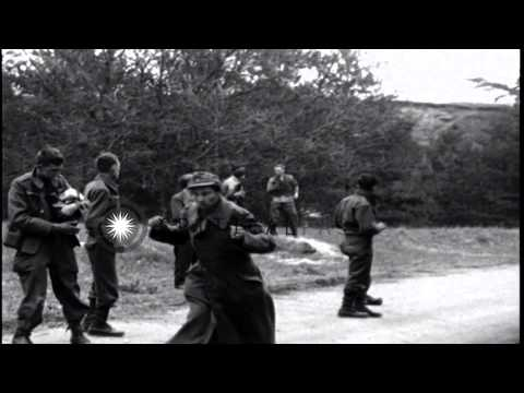 Liberated American POWs kick, hit and throw things at newly captured German priso...HD Stock Footage