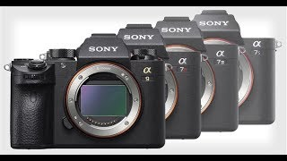Is Sony really #1?  Nikon NOCT Lenses and more… TOGLIFE