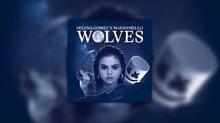 Selena Gomez x Marshmello - Wolves   Studio Quality Acapella