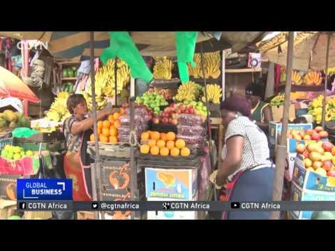 Apple, a non-traditional crop proves profitable in western Uganda