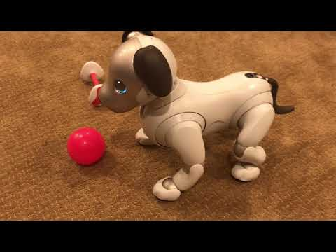 Melon the Aibo ERS-1000