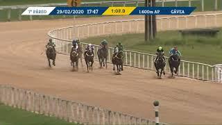 Vidéo de la course PMU PREMIO BOURBON (INTERNET)
