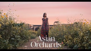 Asian Orchards by Vajor