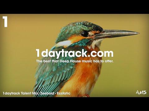Talent Mix #81   Zeebold - Ecstatic   1daytrack.com