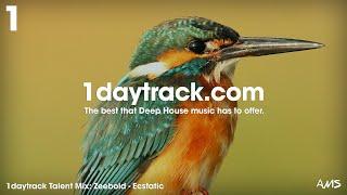 Talent Mix #81 | Zeebold - Ecstatic | 1daytrack.com