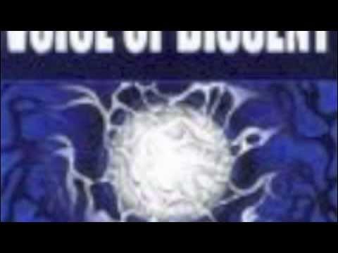 Voice Of Dissent - Revenge