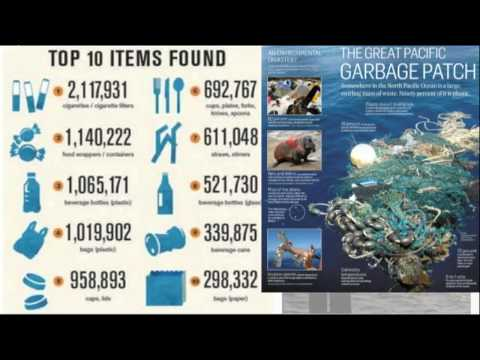 Water Pollution Part 2- Marine & Global Issues