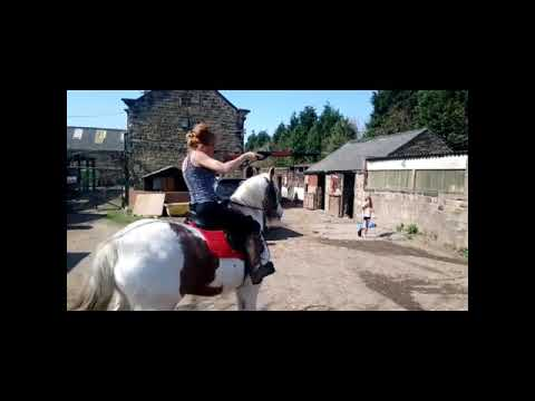DOLLY 15 HANDS HEAVYWEIGHT RIDE & DRIVE 11YRS