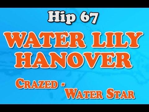 Hip #67 WATER LILY HANOVER - 2017 Goshen