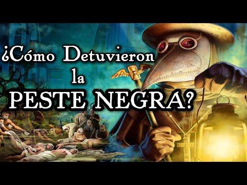 LA PESTE NEGRA: Origen, consecuencias y cómo se detuvo. (Documental Historia)