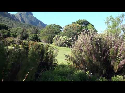 Cape Town Kirstenbosch Botanical Garden
