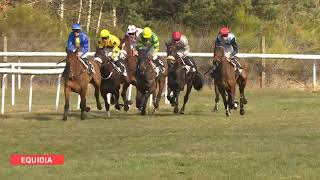 Vidéo de la course PMU PRIX LE SHAKER BAR FONTAINEBLEAU