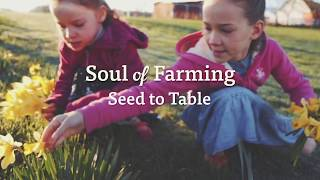 Charlene Stoller | Seed to Table | Organic Valley Farmers