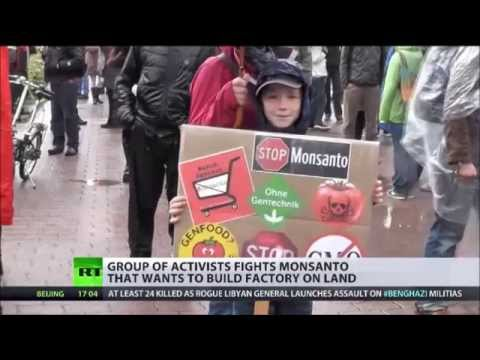 Russian anti GMO Activists Raise Funds for 'First Ever' Independent Intl Research