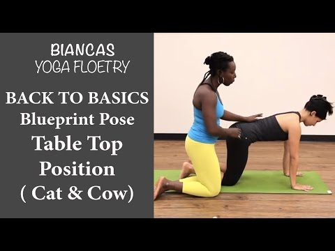 Yoga Pose: Finding Table Top Position For A Strong Spine (Cat Cow)