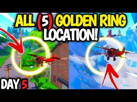 Fly Through Golden Rings In An X 4 Stormwing Plane All 5 Golden