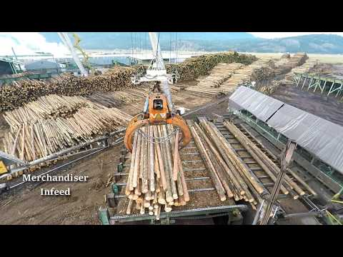 Logs To Lumber - An Aerial Journey Through The Sawmill