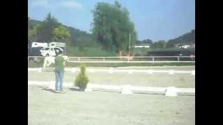 Iris du Chesselet , poney à vendre , vidéo 5 (MP3)