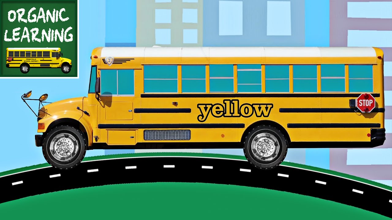 buses teaching colors learning colours video for kids