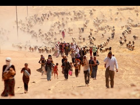 The genocide of Yazidis in broad daylight