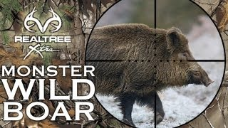 Repeat youtube video MONSTER Wild Boar Hunting in Hungary