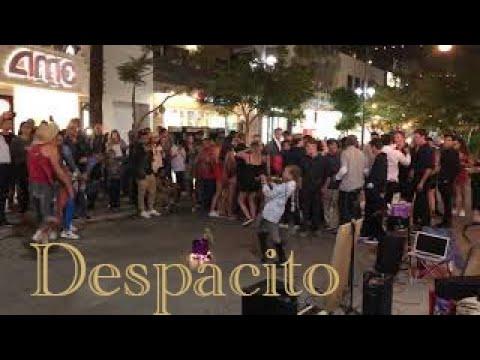 Despacito - The Guy is Dancing with a Big Fish - Karolina Protsenko (Violin Cover)