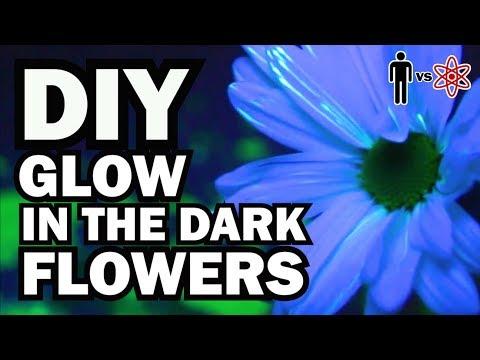 DIY Glow in the Dark Flowers - Man Vs Science #6