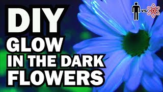 DIY Glow in the Dark Flowers - Man Vs Science #6