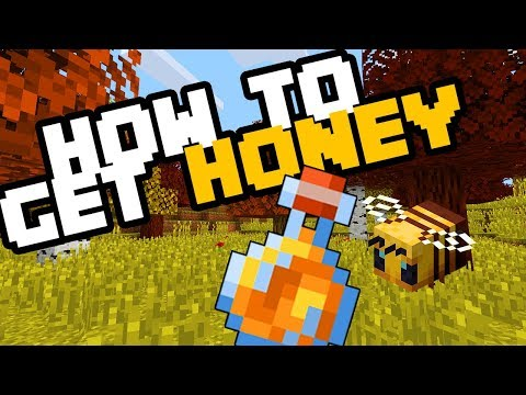 How To Get Honey (without Getting Stung) In Minecraft Bedrock Survival 2019