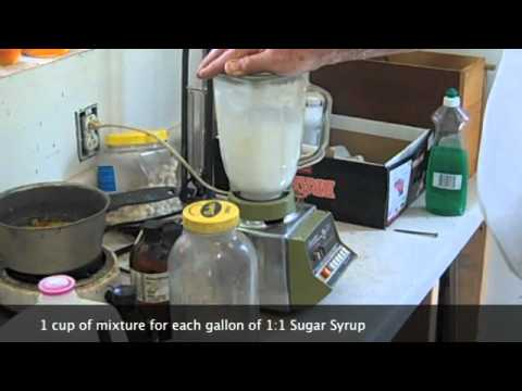 Oxalic Acid And Natural Oil Mix Bees