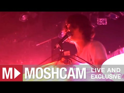 Animal Collective - My Girls | Live in Sydney | Moshcam