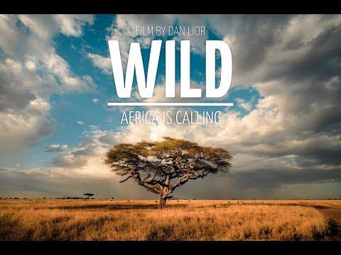 WILD: Africa is calling