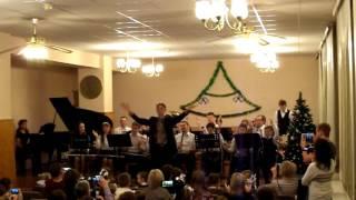 Новогодний концерт. ДМШ города Мытищи.