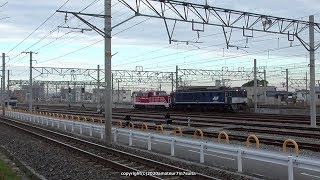 JR貨物 広島更新色EF64がDD200を牽引して吹田タに到着(R2.2.15)