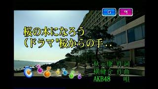 AKB48 - 桜の木になろう (벚꽃나무가 되자) (KY 43329) 노래방 カラオケ