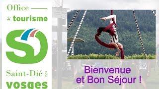 Tourisme sur le territoire de Saint-Dié-des-Vosges en 2016