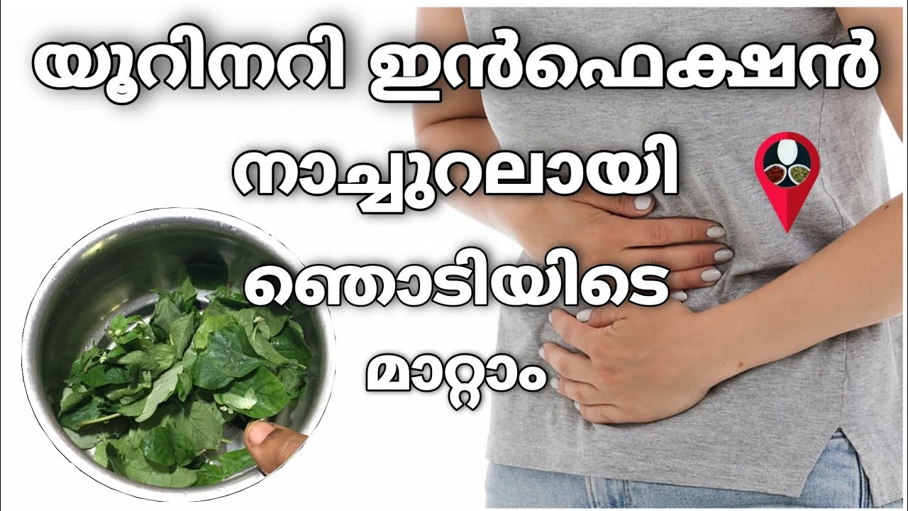 Download Home remedies for urinary tract infection in malayalam | UTI natural treatment | Prs kitchen tips