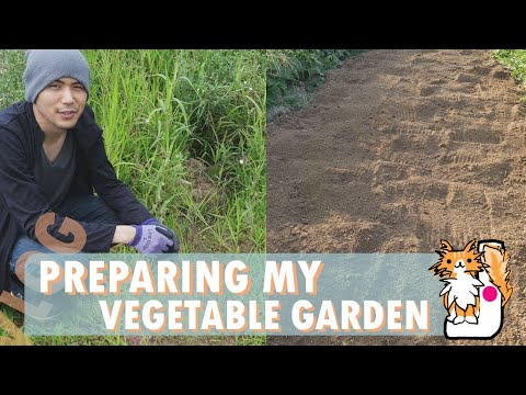 Preparing my Vegetable Garden
