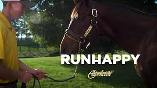 Runhappy Commercial/ Aired on TVG - NYRA -  NBCSN in 4k
