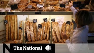 Low-carb diets can shorten life expectancy: study
