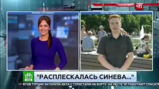 Прикол! Ржака! День ВДВ! Бухой десантник ушатал корреспондента НТВ