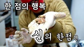 [우마]한점의 행복 - 신의 한 점 편 - Chicken Oyster, Sot-l'y-laisse