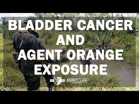 Bladder Cancer and Agent Orange Exposure | America's Veterans Law Firm