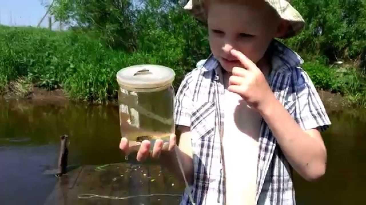 как по барометру ловить рыбу