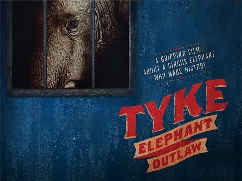 Tyke Elephant Outlaw - Official Trailer