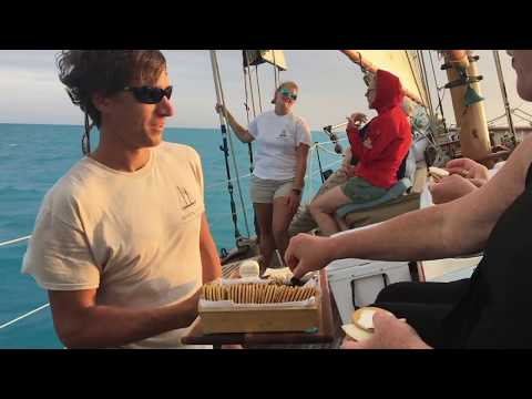 Desire Cruise Venice: What to Expect from YouTube · Duration:  2 minutes 8 seconds